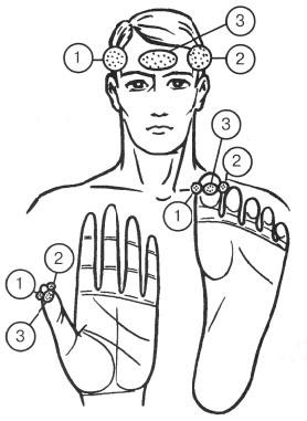 顔、手、足のリフレクソロジーポイント