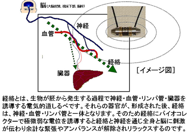 電磁リフレクソロジーのストレス軽減作用原理図