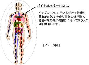 バイオコレクターの経絡系への作用